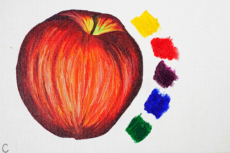 Apple painted using Cobra Artists Water Mixable Oil Paint