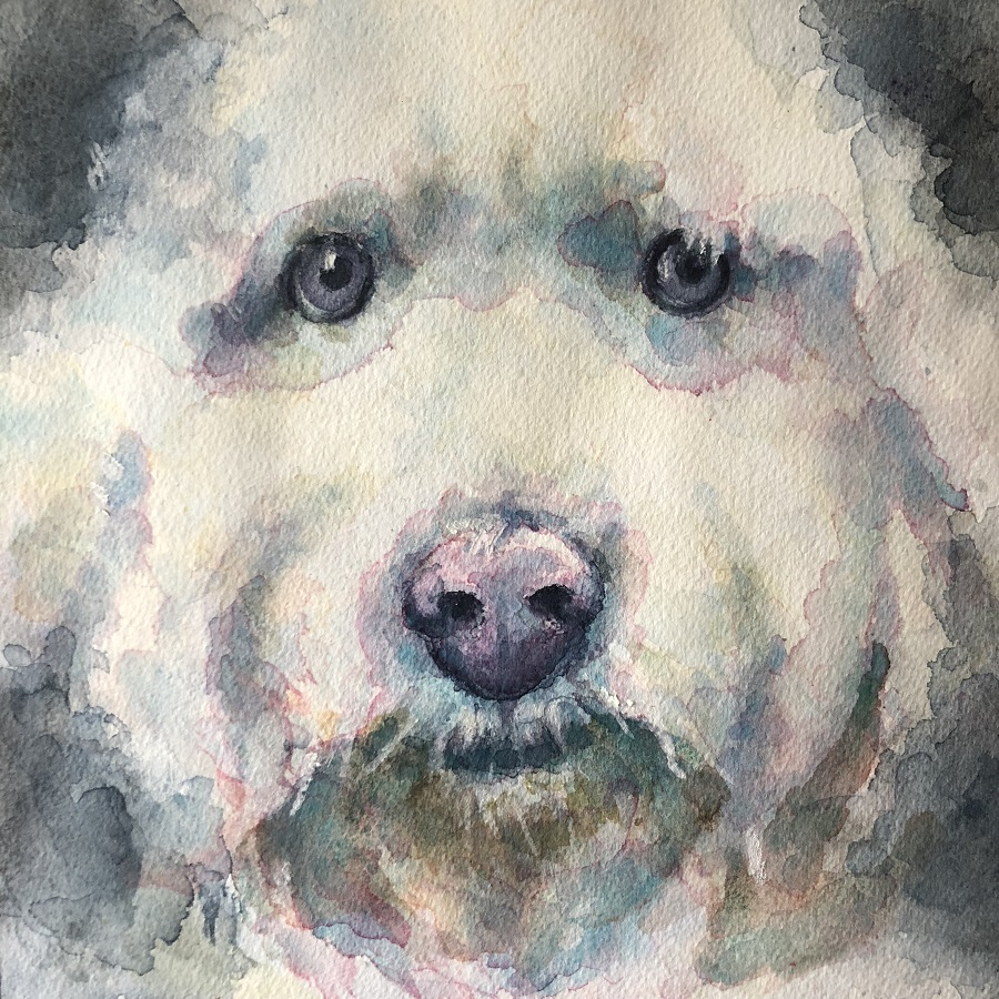 Tutorial How To Paint A Dog Portrait In Watercolour Ken