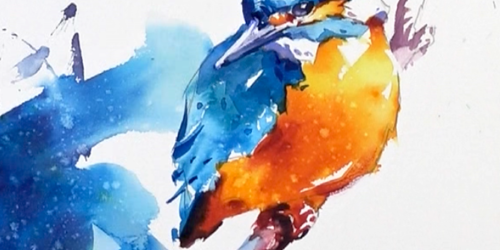kingfisher watercolour complete