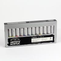 Winsor & Newton Professional Acrylic 12 x 20ml Set