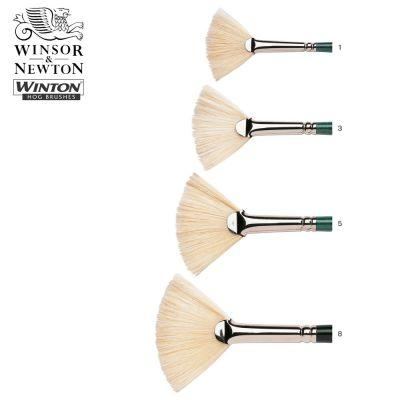 Winton Hog Fan Oil Brushes
