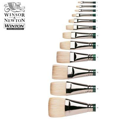 Winton Hog Short Flat (Bright) Oil Brushes