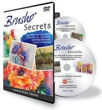 Brusho Secrets DVD