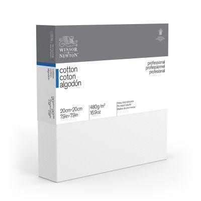 Winsor & Newton Professional Deep Edge Canvas Cartons